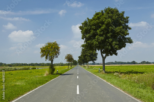 canvas print picture Landschaft mit Strasse