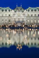 Christmas Stars In Vienna