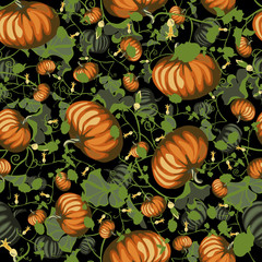Pattern with pumpkin on black background