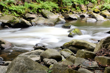 der Fluss Bode im Nationalpark Harz