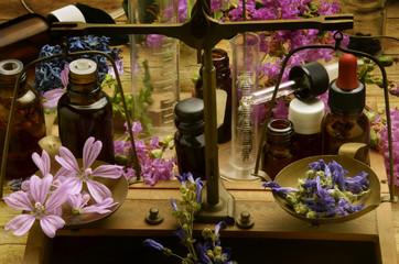 Ziołolecznictwo Herbología Herbalism Pflanzenheilkunde
