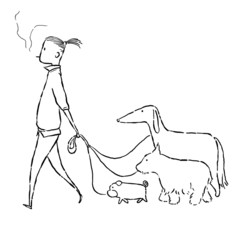 man walk with dogs