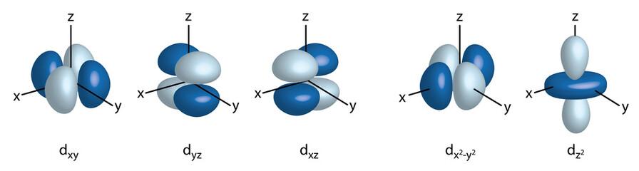 3d orbital orientation