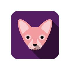 animal face flat icon