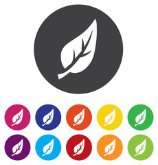 Leaf sign icon. Fresh natural product symbol.