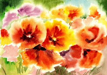 watercolor flowers, poppies abstracts art