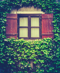 Charming Retro Ivy House