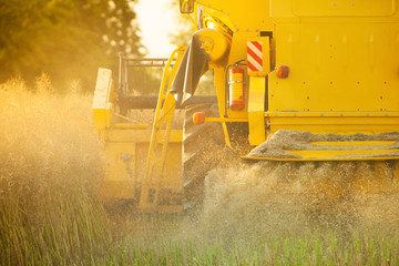 Detail of combine harvester on field