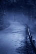 Mysterious Woman Ghost in White Dress in the Misty Road