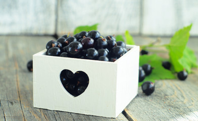 Berries of blackcurrant