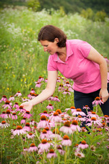 Woman in coneflower field