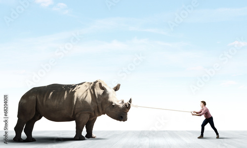 Deurstickers Neushoorn Rhino on lead
