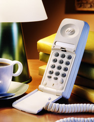 home telephone