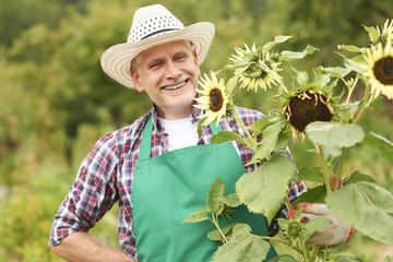 Happy mature man with sunflower in garden