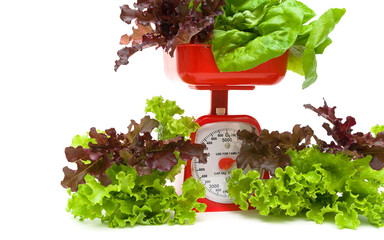 fresh salad and kitchen scales close up on a white background