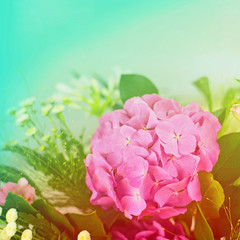 Beautiful hydrangea made with color filters