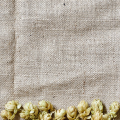 hop border on the linen background