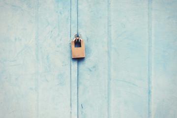 The door with lock