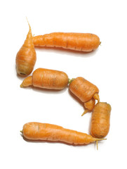 Alphabet letter S arranged from fresh carrots isolated