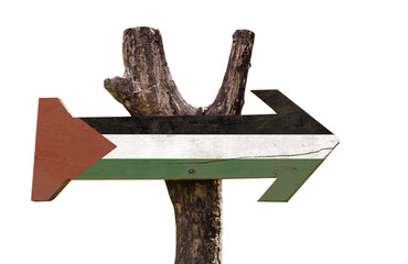 Palestine wooden sign isolated on white background