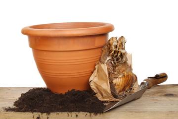 Bulb and pot