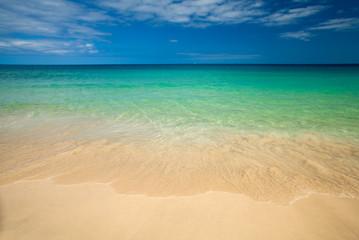 Fuerteventura, clean beach of Jandia