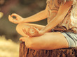 Young female meditate in nature - 68226049