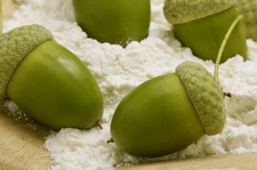 Acorn flour Ollon mjöl Farina di ghiande Mąka żołądź Eichelmehl