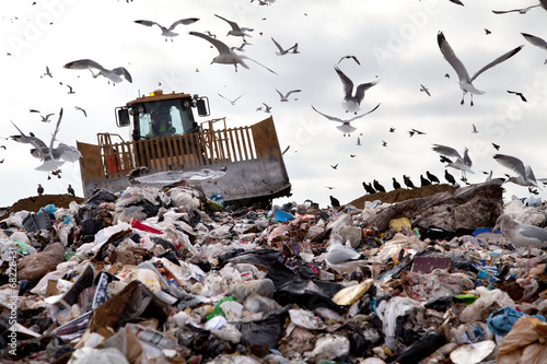 Landfill with birds - 68228431