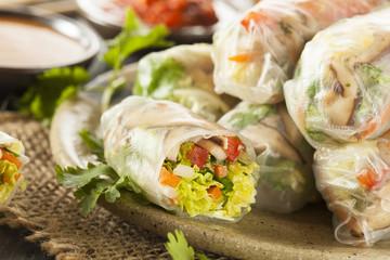 Healthy Vegetarian Spring Rolls