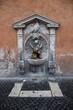 Постер, плакат: Fontana Basilica di San Pietro