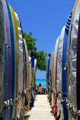 Surf board ..