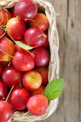 cherry-plum in basket