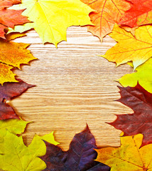 Vintage Autumn wooden border from maple and fallen leaves