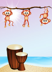 drums and monkeys