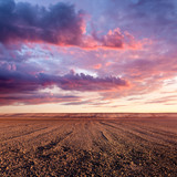 Cultivated land and cloud formations at sunset - Fine Art prints