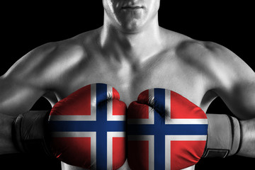 Black and white fighter with Norway color gloves