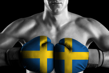 Black and white fighter with Sweden color gloves
