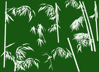 large set of bamboo branches on green