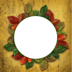 Round frame with colorful leaves