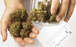medical marijuana 11 - 68245068