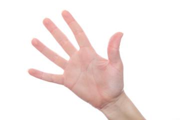 Hand gesture 5