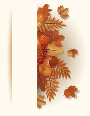 Seasonal autumn banner, vector illustration