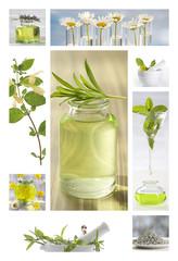 huiles essentiels et soins du corps