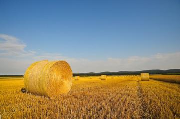 Strohballen auf Getreidefeld