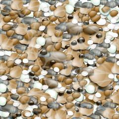 морские камни на пляже