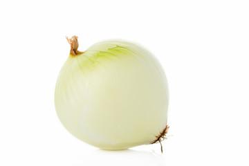 玉ねぎ onion 白背景