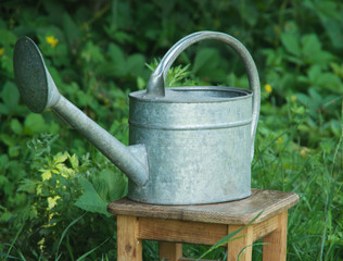 grunge watering can