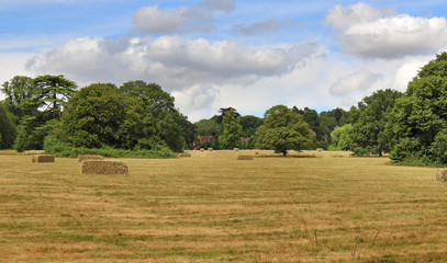 English Summer rural Landscape
