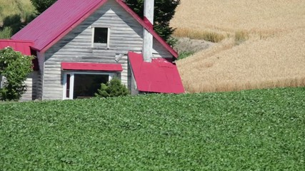美瑛の丘赤い屋根の家